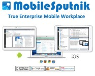The I.T. Group – MobileSputnik application.